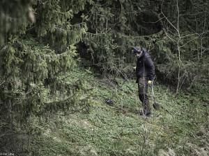 Skogsterreng å søke i denne dagen (Foto: Per Sibe)